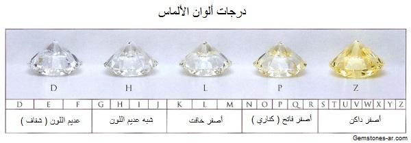 Education Mouawad 0