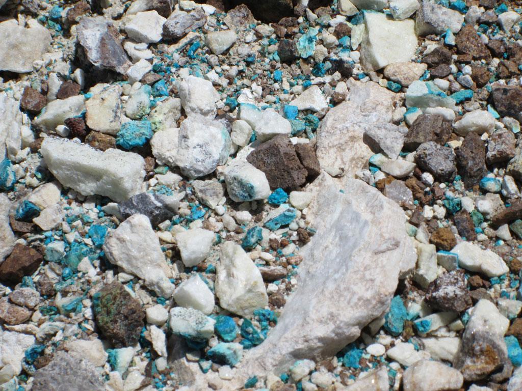 الفيروز منتشر بين الصخور